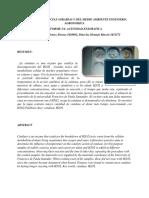 ACTIVIDAD ENZIMATICA (2