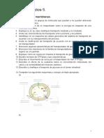 Guía de estudios 5.