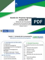 Webinar 2. Planeación, ejecución y valoración económica de proyectos.pdf
