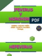 HEPEVIRUS-y-norovirus