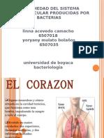 Inf Cardiovasc