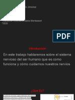Brayan Castillo-informática 902