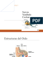 96245256-Nervio-vestibulococlear.pptx