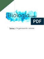BC- TEMA 1.pdf