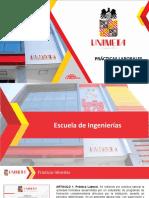 PRACTICAS PROFESIONALES V2 REGLAMENTO 003de 2020 (1)