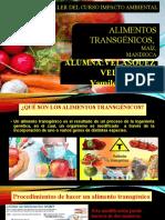 Alimentos-Transgenicos-VELASQUEZ