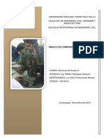 INFORMES SUELOSII.pdf