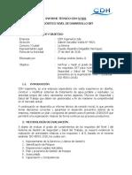 INFORME DIAGNÓSTICO NIVEL DE DESARROLO PREVENTIVO CDH INGENIERÍA