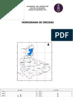 HIDROGRAMAS  PE.pdf