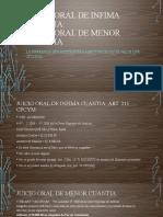 JUICIO ORAL DE INFIMA y MENOR CUANTIA