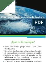 Conceptos fundamentales de ecologia para prepa.ppt