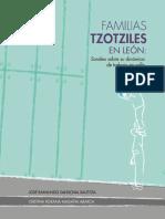 Familias tzotziles en León