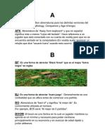 Diccionario AOE2