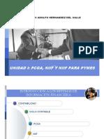 PCGA, NIIF Y NIIF PARA PYMES