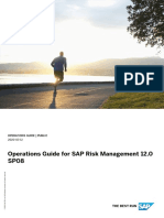 RM Operations Guide for SAP Risk Management 12.0.pdf