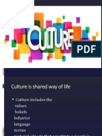 Culture ( Lecture 3)