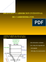 Absorcion_carbohidratos_2012