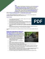 Volcanoes National Park Rwanda   Gorilla Tracking Lodges, Accommodation, Families, Groups