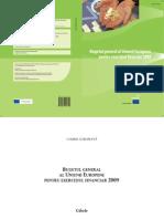 Cifrele Buget UE 2009