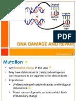 DNA Damage and Repair_addtnlnotes.pdf