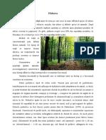 doc info copy