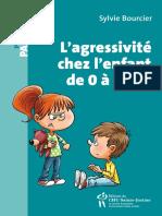 agressivite chez l'enfant de 0 a 5 ans, L' - Sylvie Bourcier