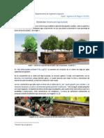 EmisoresC1 (1).pdf