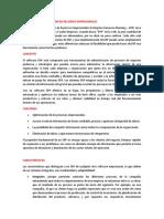 SISTEMAS DE PLANIFICACIÓN DE RECURSOS EMPRESARIALES