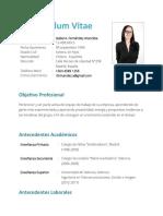 EJEMPLO DE Curriculum Vitae Simple