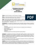 GUIA PROYECTO DE PRACTICA (2).docx