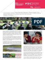 AlterDiseno_poster_PDC2020