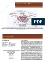 Pure  Report Newsletter December 2010