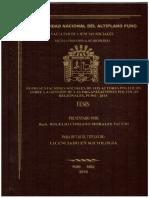 TESIS_FIRMADO.pdf