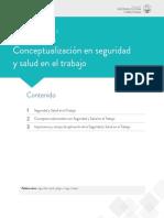 Lectura 1 Conceptualización en seguridad.pdf