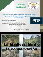 Convenio para la conservación de la biodiversidad y la protección de áreas silvestres priorizados en centroamérica