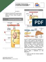 ACF2020_TALLER 3 _8_ciencias Naturales _2periodo_JAguilar.docx