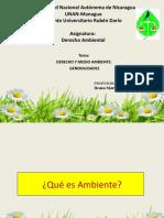 Derecho y medio ambiente I