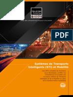 Plaquette-ITS.pdf