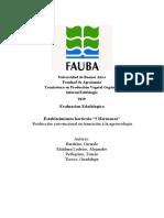 Universidad de Buenos Aires.docx