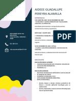 C.V. AIDEEE GUADALUPE PEREYRA ALAMILLA.pdf