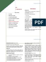 ACADEMIA DE LIDERES.doc
