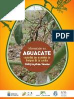 Enfermedades Del Aguacate Botryosphaeriaceae