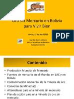 Oro sin Mercurio en Bolivia V1.0.ppsx