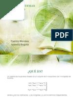 APLICACIÓN SISTEMAS DE ECUACIONES LINEALES.pptx