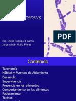 5.10 Bacillus cereus