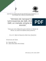 Tesis Gabriel Alejandro Martínez Castañón .pdf