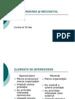 C11_Sponsorizare_mecenat