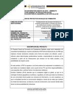 PSF CIUDADANIAS DIGITALES 2020