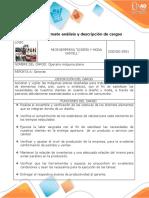Anexo 3. Formato análisis y descripción de cargos (carlos)