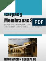 Ingenieria concurrente Carpas y Membranas